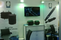 automechanika-dubai-2016 (2)